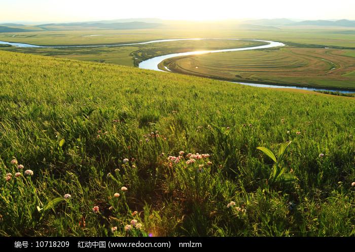 草原牧场植被丰茂图片