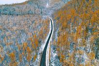 大兴安岭森林之路秋雪