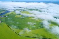 航拍晨雾中的田园风光