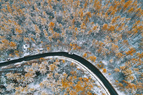航拍金色树林山路雪景