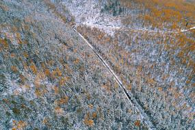 航拍秋季林海公路雪景