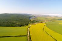 航拍田野农作物风景