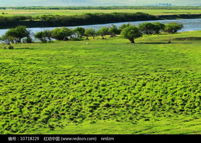 呼伦贝尔草原河岸湿地风景图片