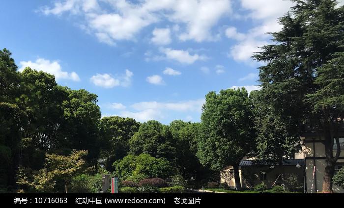 蓝天下的绿色园林图片