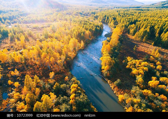 林海金秋河流图片