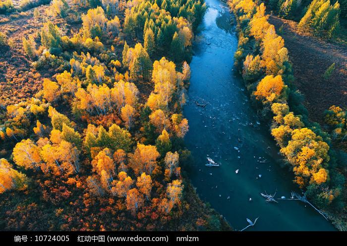 茂密树林河湾秋色图片