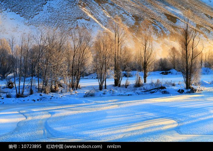 雪原树林晨雾朝阳光影图片