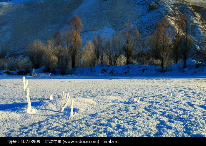 雪域冰河树林风景图片