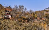 深秋的乡村风景