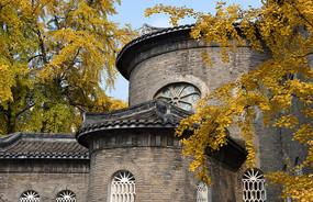 平安桥天主教堂银杏树