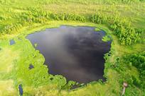 森林湖泊马兰湖湿地风景
