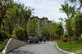 重庆巫山摩天岭绿色家园