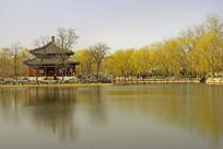 北京圆明园万春园水景