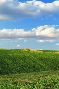 农垦田园风光