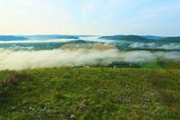 湿地晨雾风景