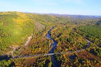 穿越秋季森林的河流