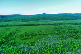大兴安岭漠河山林风景