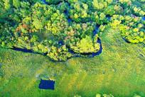 大兴安岭秋季丛林小溪
