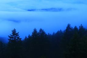 大兴安岭森林蓝雾风景