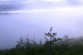 大兴安岭山峦起伏林晨雾迷漫