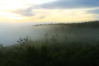 大兴安岭水墨画一般的山林云海