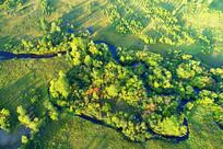 航拍丛林小溪秋色