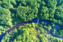 航拍绿色林海河湾
