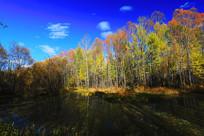 河流彩林风光