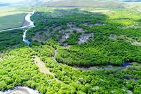 绿色丛林河湾(航拍)