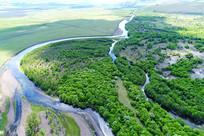 茂密绿色丛林河湾地貌风景