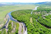 茂密绿色树林河流