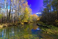 森林河彩林秋景
