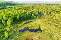 大兴安岭森林湿地湖泡景观