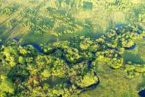 航拍大兴安岭秋季森林小溪