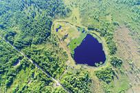 绿色林海马兰湖风光