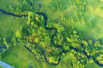 秋季森林山溪风景