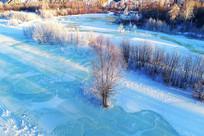 冰河树林雪景