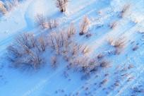航拍雪域丛林晨光