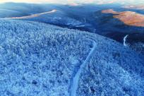 雪色山林公路