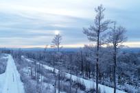 雪域山林公路