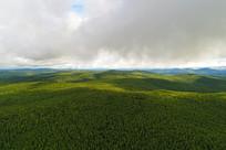 大兴安岭辽阔的山林