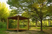 韩国水原孝园公园的韩式凉亭