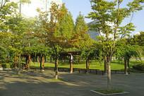 韩国水原孝园公园的绿廊廊架