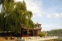 北京小月河畔的紫薇入画亭