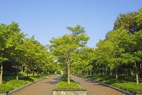 韩国水原公园的户外步行道