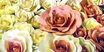纸玫瑰花背景