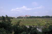 东甲新村美景