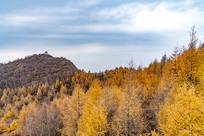 白石山森林公园风光