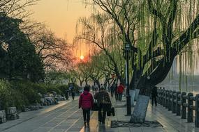 春临大明湖畔