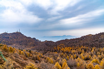 多云下的秋季森林